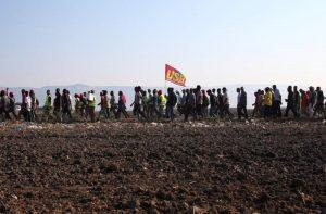 Lavoro agricolo, durissimo richiamo della UE all'Italia sullo sfruttamento dei migranti. USB: cosa pensa di fare il governo?