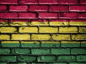Bolivia realizará por primera vez la elección de candidaturas de binomios presidenciales el 27 de enero