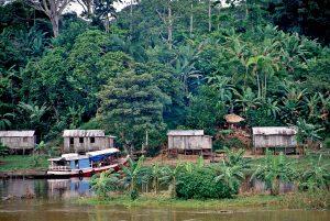 Obras de Bolsonaro para Amazônia abrem a floresta ao agronegócio