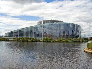 Foca-se em imigração para evitar falar de crise política, diz candidata a eurodeputada
