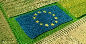 Latte: i fondi europei finiscono principalmente a grandi aziende