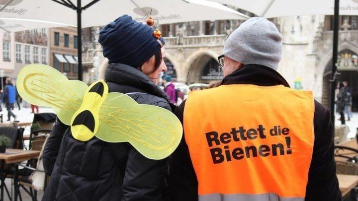 """""""Give bees a chance!"""" Auf geht's zum Volksbegehren """"Rettet die Artenvielfalt"""" – nicht nur in Bayern"""