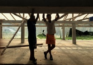 Furukawa : l'esclavage de l'abaca en Équateur