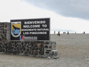 Chilenische Wissenschaftler besorgt über Antibiotika resistente Bakterien in der Antarktis