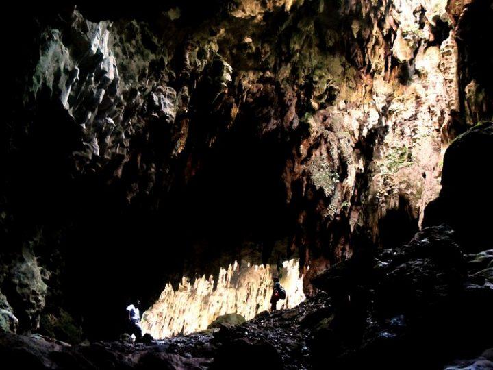 Homo Luzonensis : la nouvelle espèce humaine découverte
