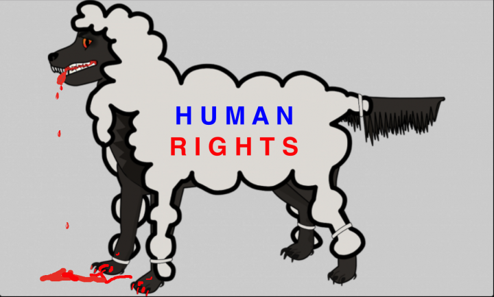 The Human Rights Organizations Are Part of the Problem