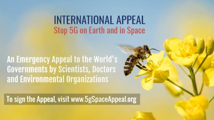 Wissenschaftler und Ärzte weltweit besorgt um Auswirkungen von 5G auf Mensch und Umwelt: Stopp von 5G auf der Erde und im Weltraum