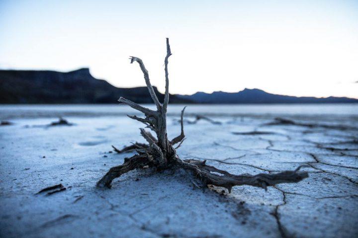 La Humanidad o el abismo