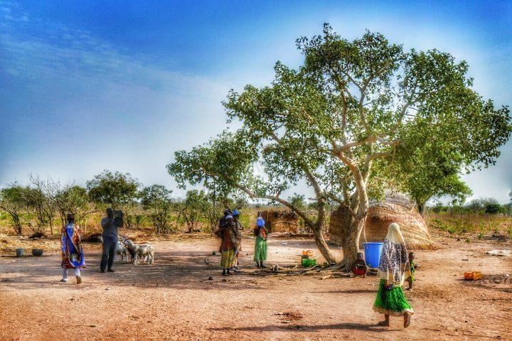 In Nigeria una rondine può fare primavera