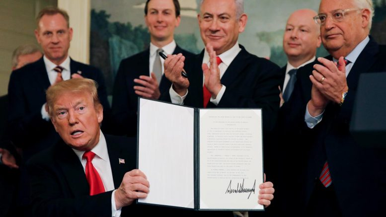 """Nuova Palestina"""", la beffa del secolo"""