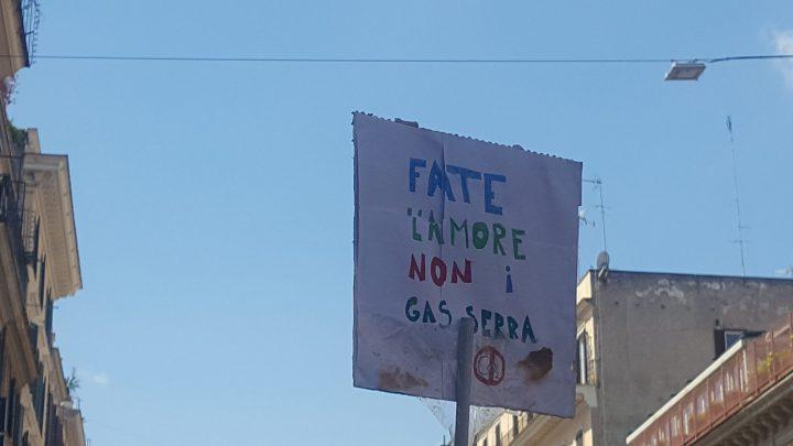 Fridays for Future Roma 24/05/2019