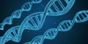 Massives Projekt zu afrikanischer DNA soll die Wissenslücke über psychische Erkrankungen schließen