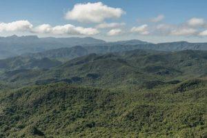 Demolición del sistema ambiental en Brasil ya enfrenta reacciones