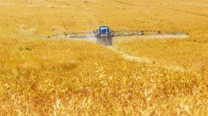 Los pesticidas y herbicidas envenenan nuestra salud