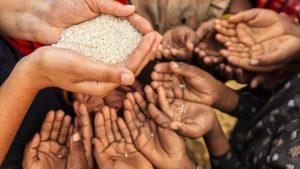 ONU: 820 millones de personas padecen hambre, aunque crece obesidad