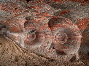 Antropocene, così l'uomo ha sconvolto la vita sulla Terra
