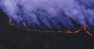 RUSSIA: Perché nessuno spegne gli incendi in Siberia?