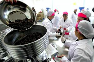Con le «Lazzarelle», il caffè tostato in carcere profuma di libertà