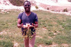 Senegal: Agriculture biologique au service de la societé
