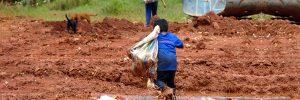 O trabalho infantil e o país dos desempregados