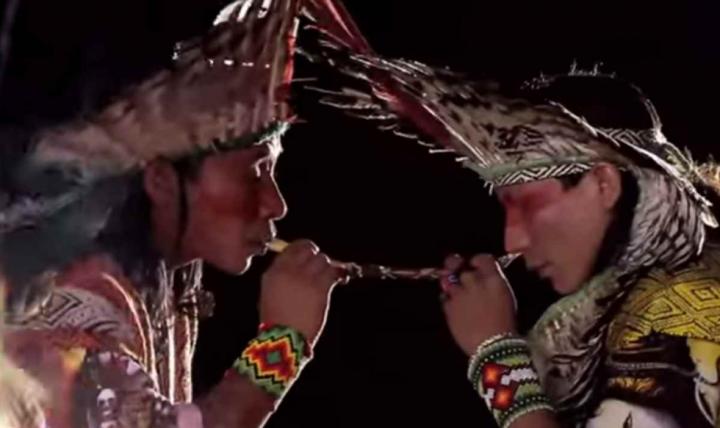 ¿Cuánto le debemos a los indígenas por todo el sufrimiento humano evitado gracias a su medicina?