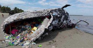 ¿Puede el reciclaje realmente resolver el problema del plástico?