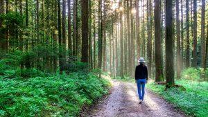 Naturmeditation ist Slowfood für die Seele – Draußen ganz bei sich