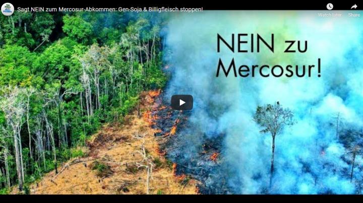 Austria – petición de protección de los animales: Mercosur, soja genéticamente modificada y carne barata, ¡deténgase!