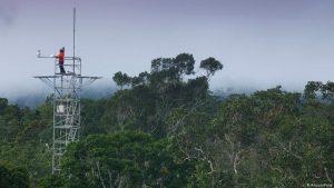 Amazônia pode ser menos resistente ao efeito estufa do que se pensava