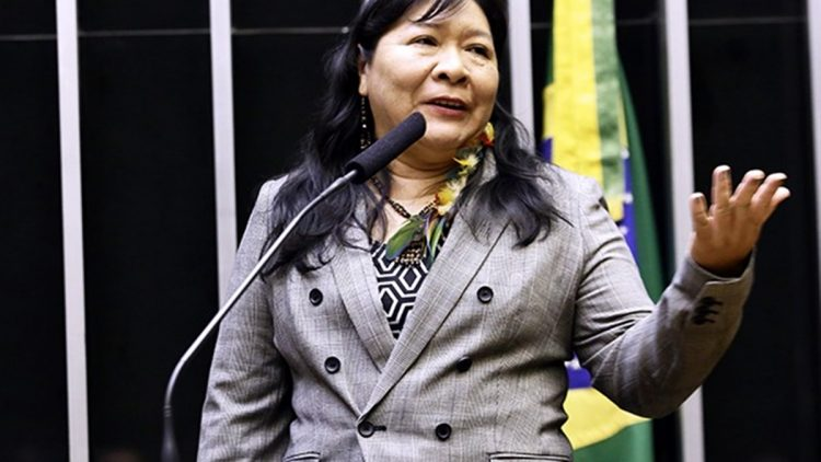 Joênia Wapichana - The First Indigenous Deputy of Brazil