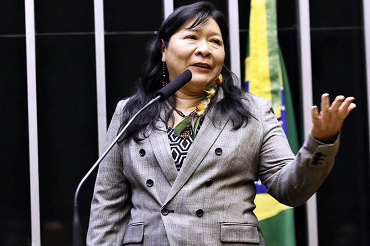 Joênia Wapichana, Primeira deputada indígena do Brasil