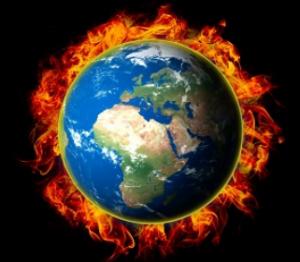Klimakrise: Deutschland muss Tierbestände abbauen