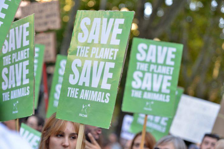Manifestación por el clima_Madrid_27092019_ARIEL BROCCHIERI (53)