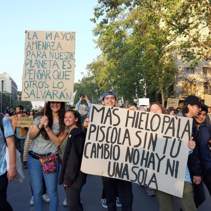 Marcha Mundial por el Planeta-Claudia Aranda-27 sept-2019-Stgo-Chile (12)