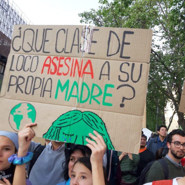 Marcha Mundial por el Planeta-stgo-chile-fotos de Claudia Aranda-27-sept-2019 (3)
