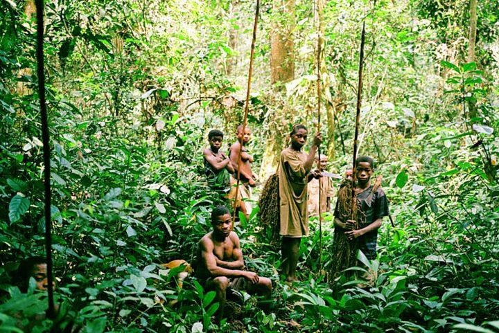 Indagate su abusi e torture al popolo Baka del Congo!