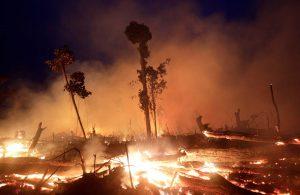 Amazonia, las llamas de la codicia