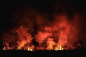 Amazonas: eine Nacht in Flammen