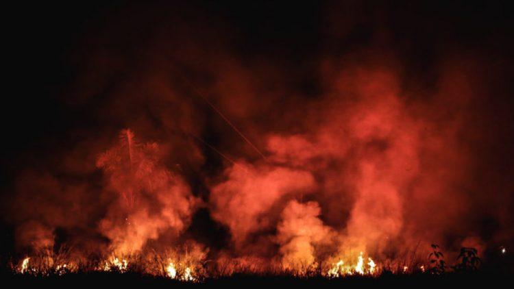 Amazone : la nuit en flammes