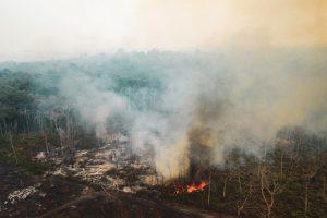 Amazzonia, incendi +196%: da politica e multinazionali servono impegni concreti