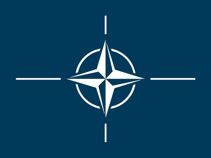"""Dos fiscales resucitan el """"Stay-Behind"""" de la OTAN"""