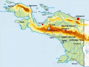 Papua indonesiana: torna la violenza