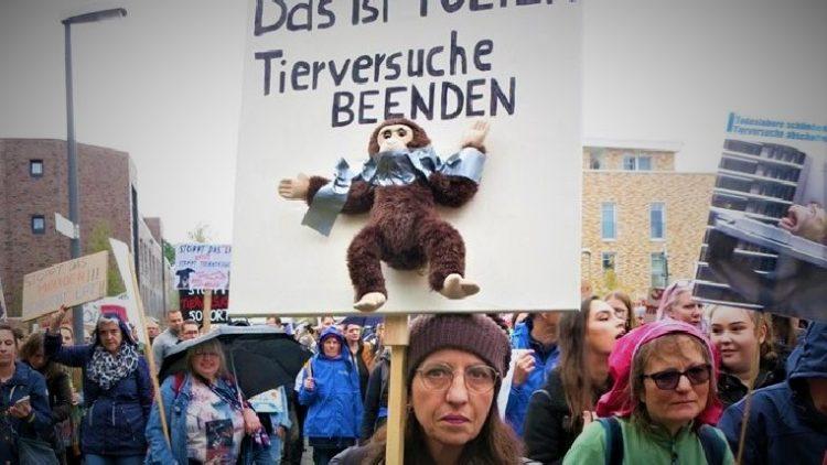 Während Tausende gegen das Todeslabor LPT bei Hamburg demonstrieren, verleiht das Bundesministerium für Ernährung und Landwirtschaft den Tierschutzforschungspreis und vergibt weiterhin Gelder an Institutionen, die untätig bleiben. Derweil wird in deutschen Tierversuchs-Labors munter weitergequält. Dabei sind Tierversuche ein Auslaufmodell, Deutschland hinkt hinterher.
