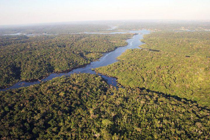 ¿Por qué los ateos pueden rezar en el Sínodo de la Amazonía?