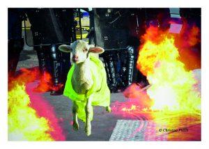 Fable sur les Gilets Jaunes : Le loup et l'agneau