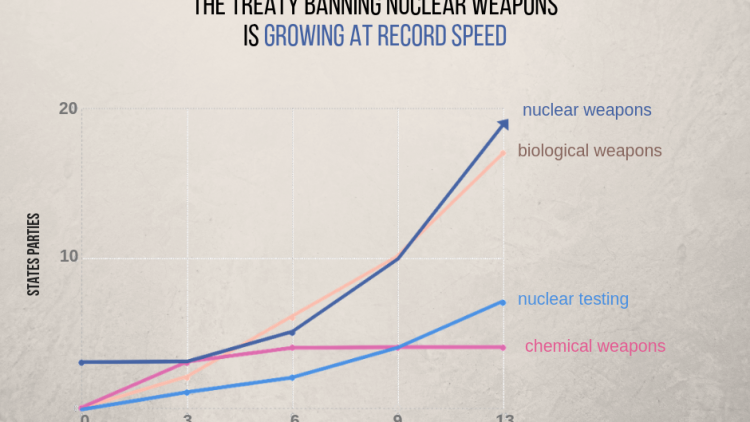 nuclear weapons ban monitor 2019