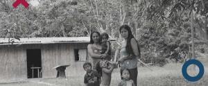 Diritti umani e ambiente: il caso dell'Amazzonia