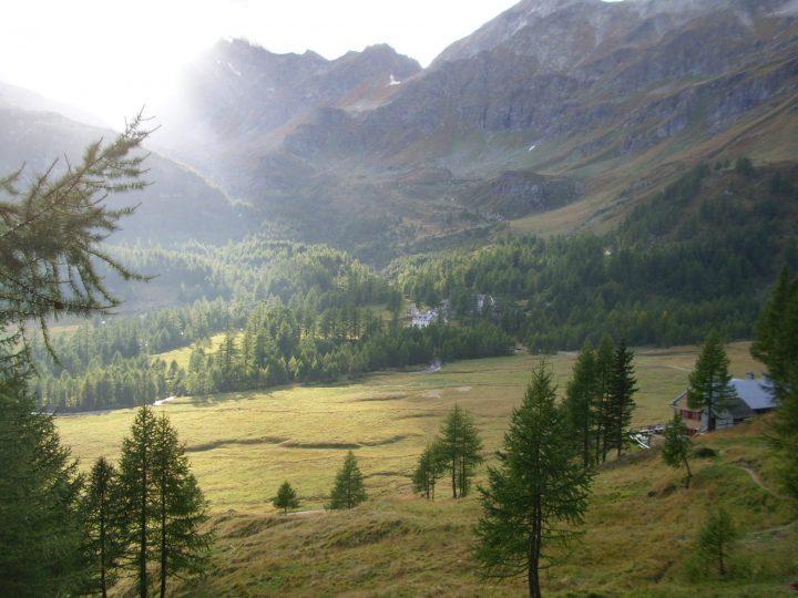 Piemonte: all'Alpe Devero ruspe in agguato