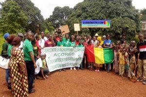An 61 de l'indépendance : la plateforme Voix du Peuple plante 61 arbres à Démoudoula