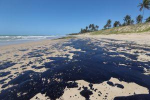 Marea nera in Brasile